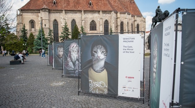 Expoziția foto The eyes are the mirror of the Soul de Sebastian Magnani la Photo Romania Festival
